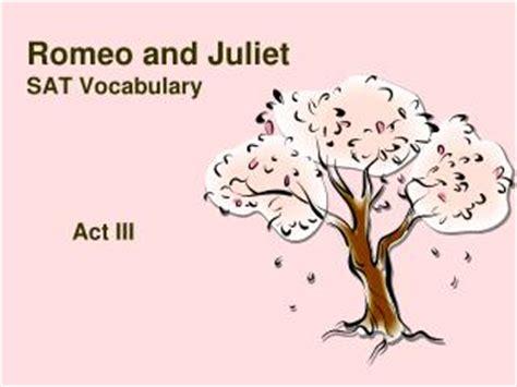 Romeo and Juliet Essay Topics - newyorkessayscom